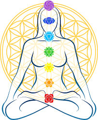 Chakra Colors and Flower Of Life